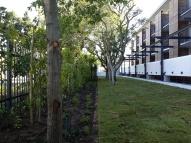 Deo Gloria 1 Garden